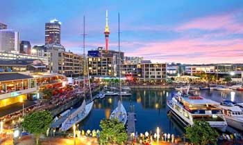 Investment in New Zealand